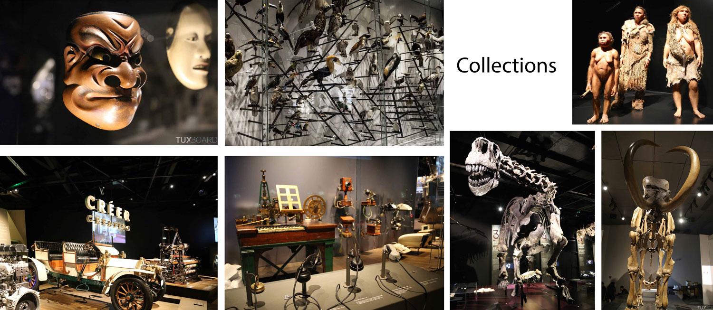 Collections du musée des Confluences de Lyon
