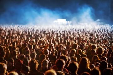 organisation concert