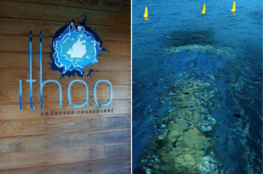 resaurant ithaa, maldives